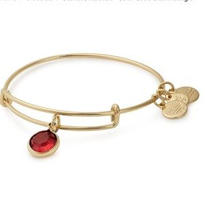 Alex and Ani Red Magma Crystal Bracelet
